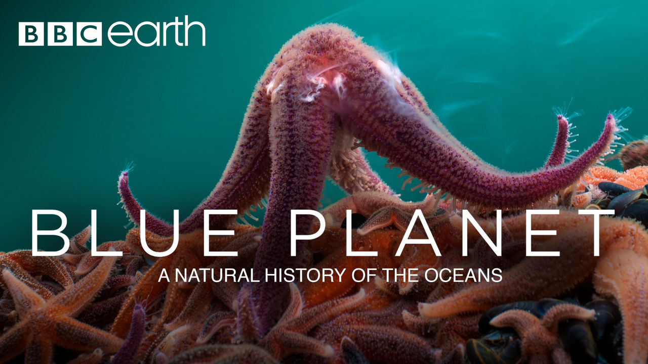 Image result for the blue planet a natural history of oceans