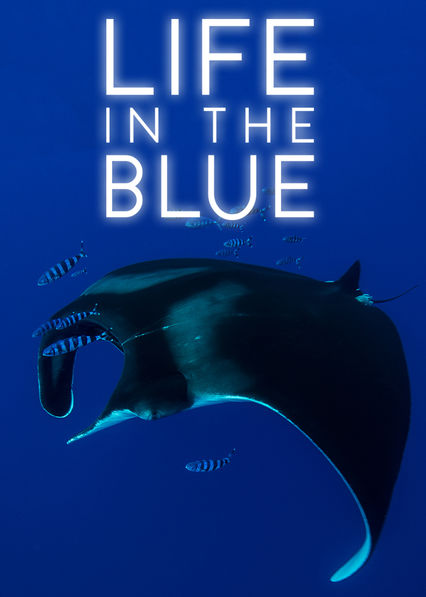 Life in the Blue on Netflix AUS/NZ