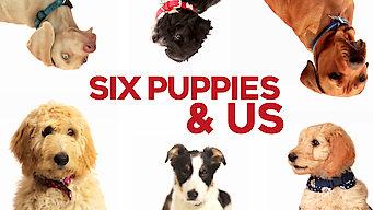 6 Puppies & Us (2018)