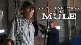 The Mule (2018)