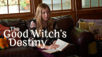 The Good Witch's Destiny (2013)