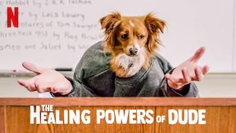 The Healing Powers of Dude (2020)