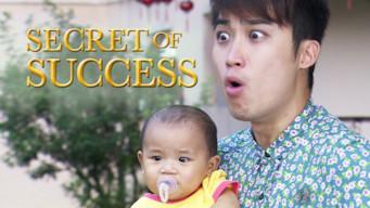 Secret of Success (2015)