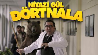Niyazi Gül Dörtnala (2015)