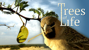 Trees of Life (2015)