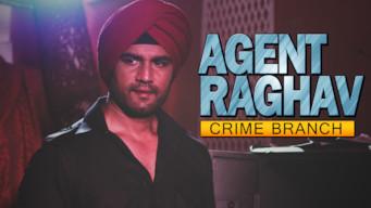 Agent Raghav (2015)