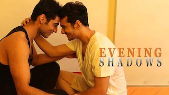Evening Shadows (2018)