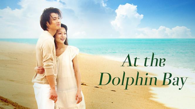 At the Dolphin Bay
