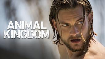 Animal Kingdom (2019)