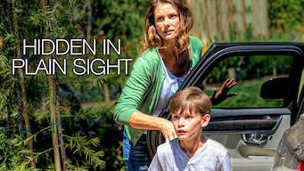 Hidden in Plain Sight (2019)