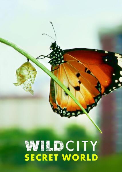 Wild City: Secret World