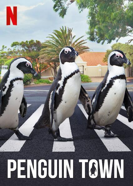 Penguin Town on Netflix AUS/NZ